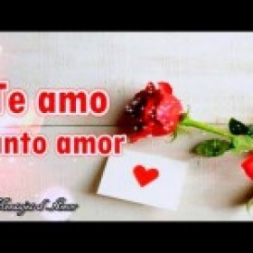 AMOR TE DEDICO ESTE VIDEO 💖 TE AMO TANTO ❤ VIDEO DE AMOR ROMANTICO