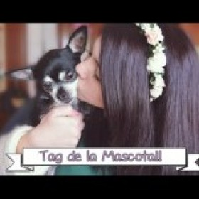 Tag de la Mascota / Furry Friend Tag ♥ Ronro Love